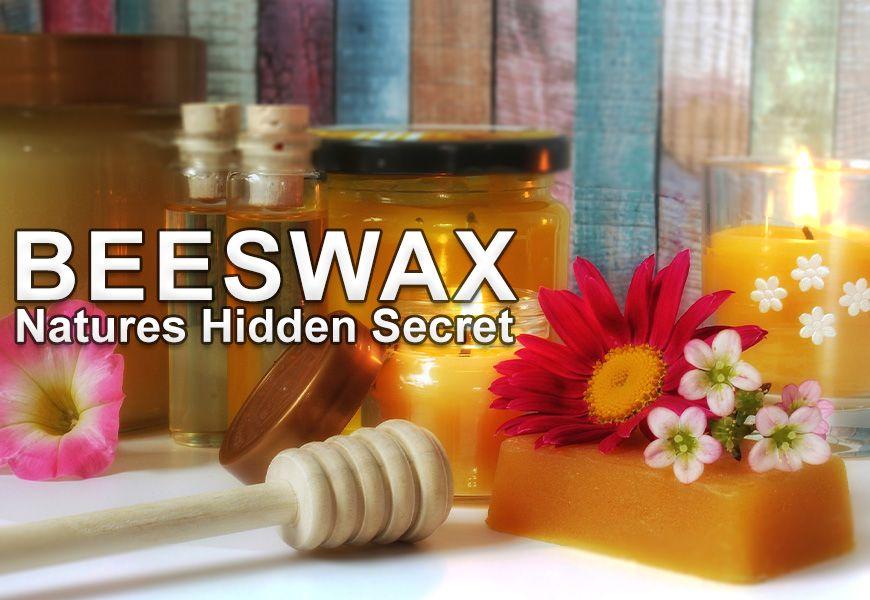 Beeswax Facts - Nature's Hidden Secret