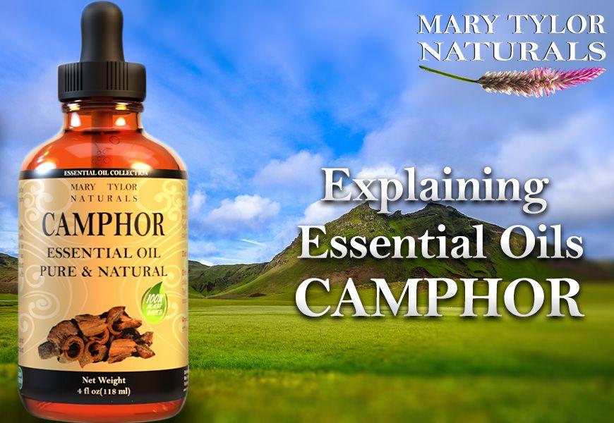 Explaining Essential Oils Camphor