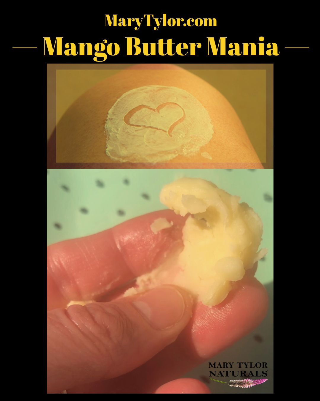 Mango Mania!  Mango Butter is all over... your skin