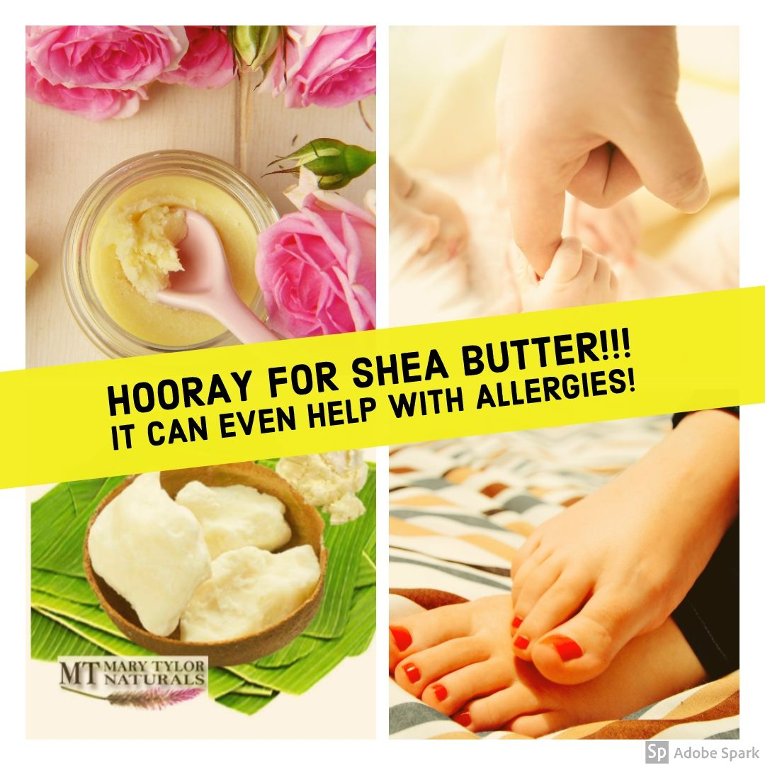 Hooray For Certified Organic Shea Butter! A Big Thank You to this natural moisturizer SHEA!!  It can even help with Allergies!   - 100% Certified Organic Shea Butter is great for healing skin and helping with allergy inflammation.