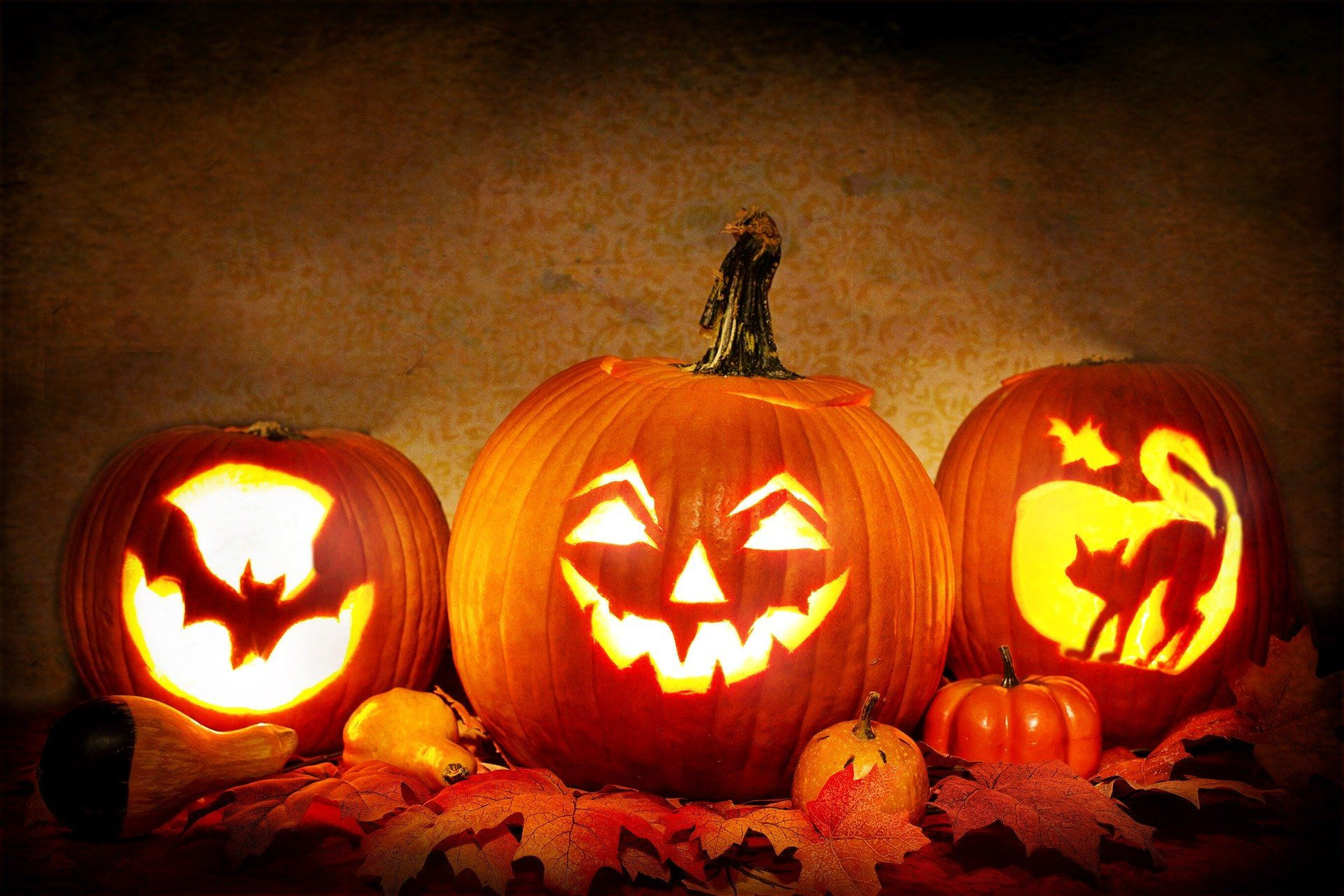 How to Have a Happy Halloween during Quarantine: Safe Ideas to Celebrate Halloween