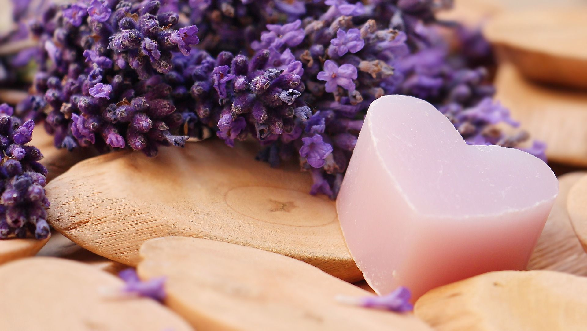 Kid Friendly Uses for Lavender Essential Oil