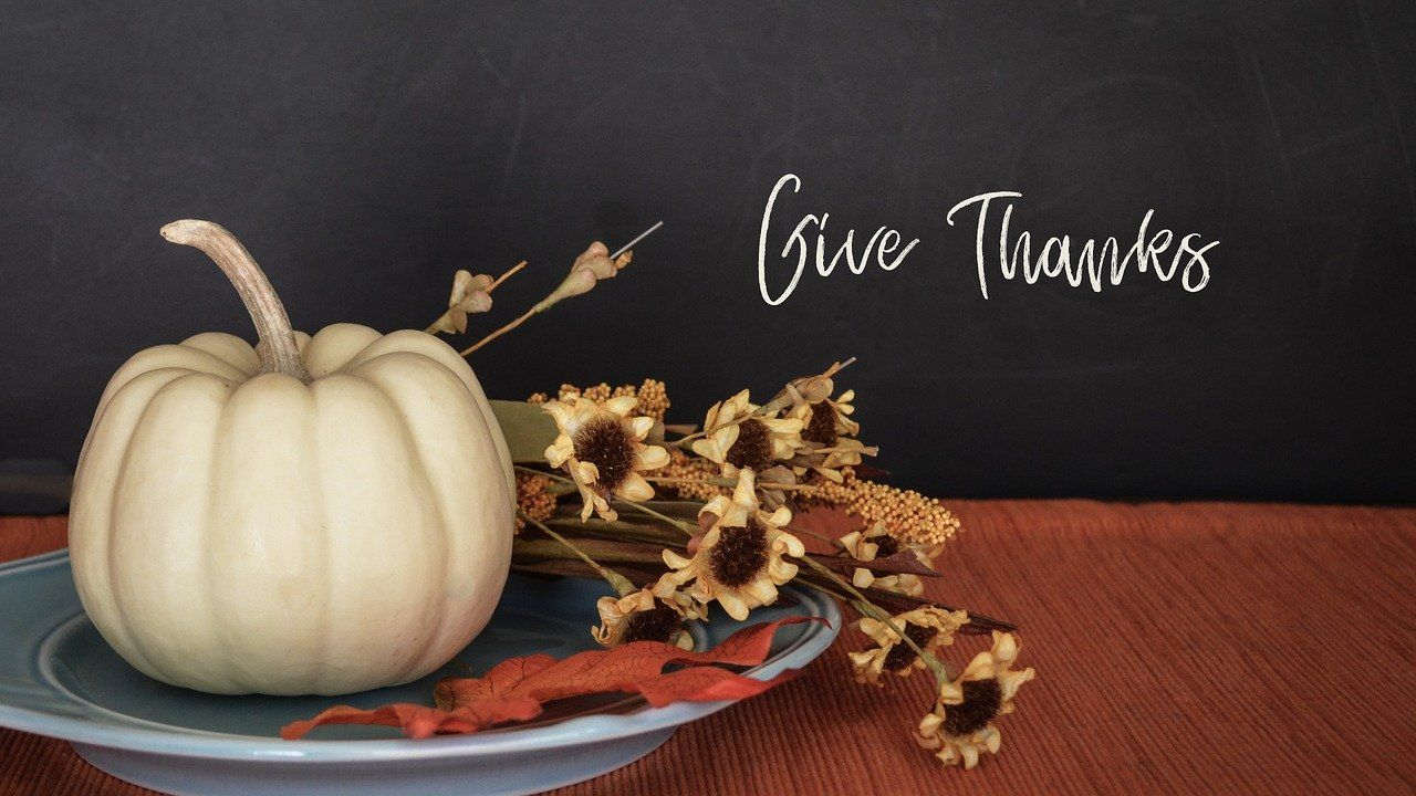 Tips for an Earth Friendly Thanksgiving