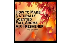 How to Make Natural Fall Aroma Air Freshener