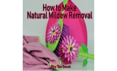 How to Make Natural Mildew Remover